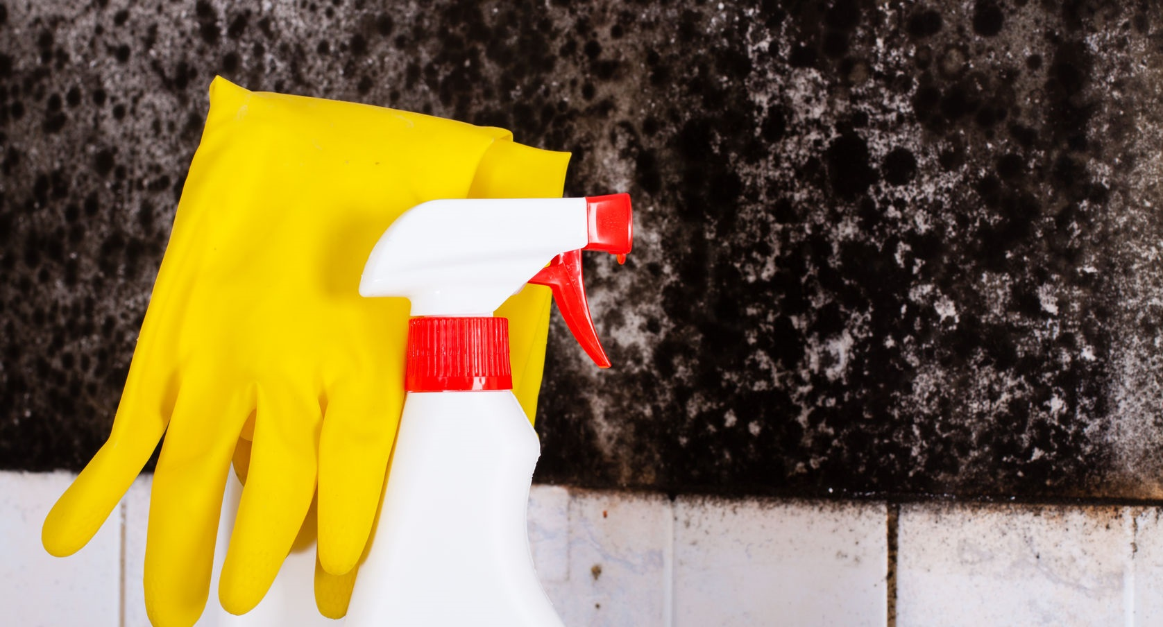 preparation for the removal of mold and yellow gloves against the mold on wall.